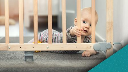 Picture for category Baby Proofing & Safety