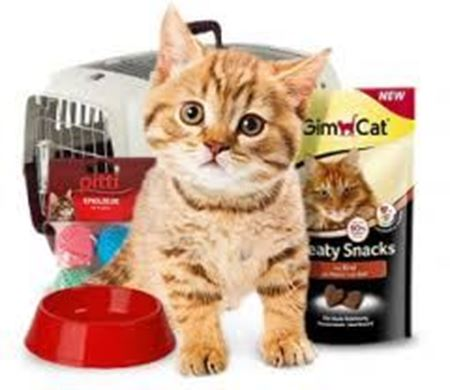 Picture for category Cat Supplies
