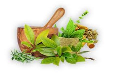 Picture for category Ayurvedic