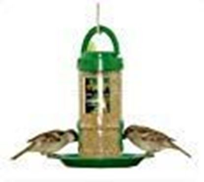 Picture of Amijivdaya Small Bird Feeder with Holding Handle, Transparent, Green